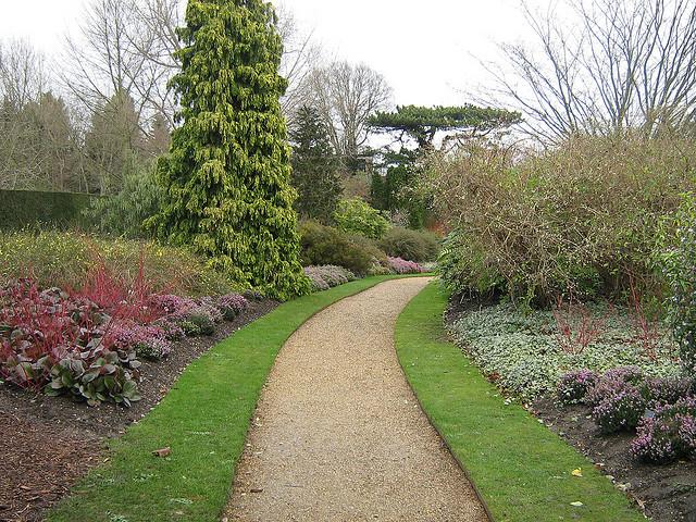 Tareas de invierno en el jard n blogs - Tareas de jardineria ...