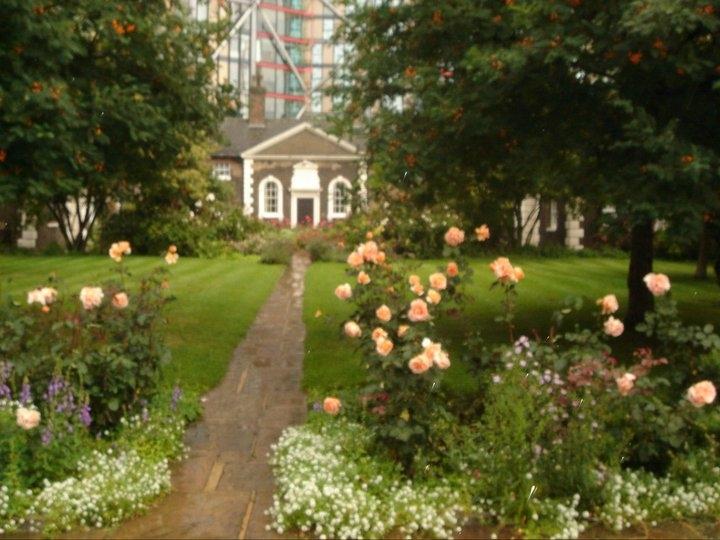 Todo sobre las rosas taringa for Cancion jardin de rosas