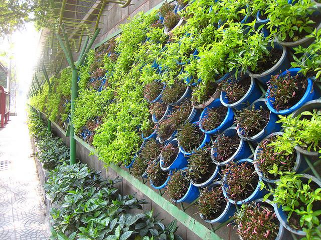 Jardines verticales verde en la ciudad blogs - Macetas para jardin vertical ...