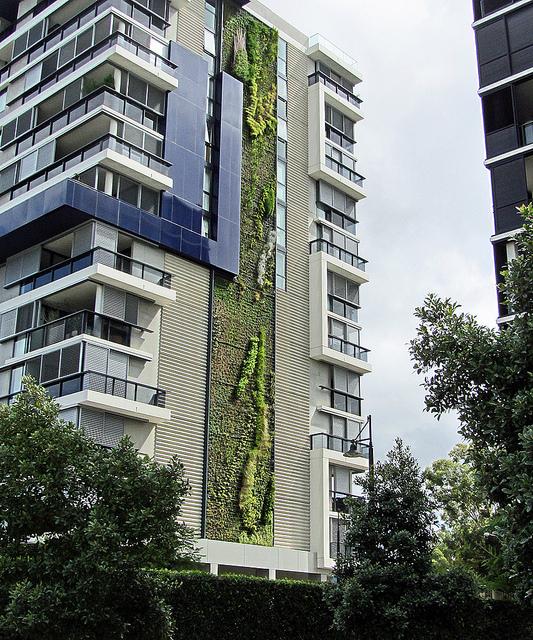 jardines verticales verde en la ciudad blogs
