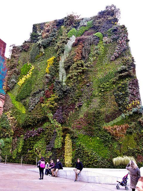 Jardines verticales verde en la ciudad blogs for Jardin vertical madrid